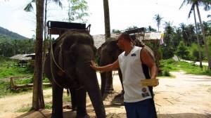 Krmenie slona bananmi